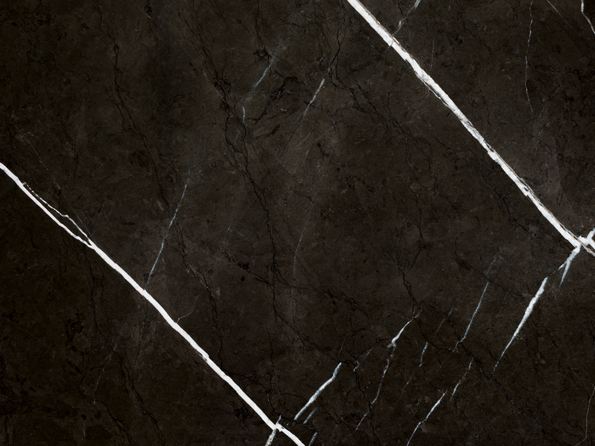 Pietra Grey marble sample